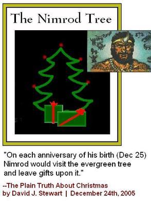 XMAS TREE NIMROD 2